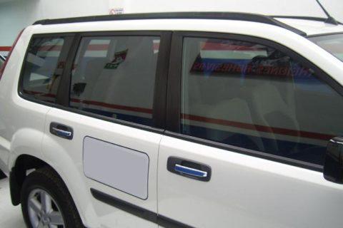 Carros polarizados 31